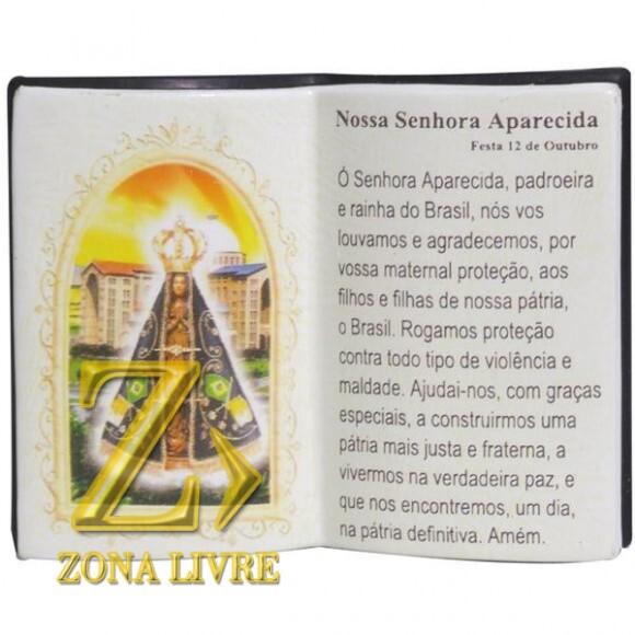 N.SRA APARECIDA LIVRO P/CANETA 14X11CM